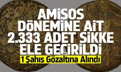 Amisos dönemine ait 2.333 Adet sikke ele geçirildi.