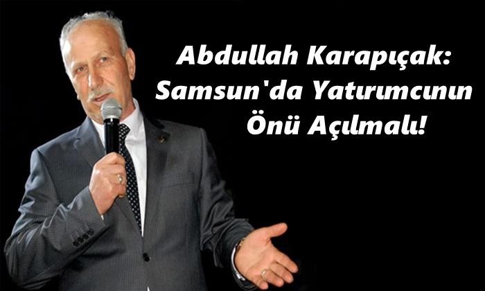 Abdullah Karapıçak: Samsun'da Yatırımcının Önü Açılmalı!