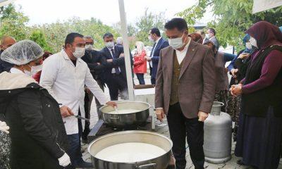 Atakum Belediyesi Kırsalda Üretilen Doğal Peyniri Büyük Şehirlere Taşıyacak