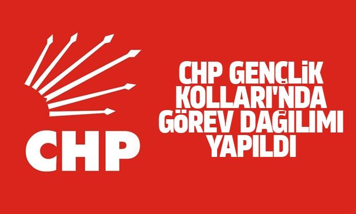 CHP Gençlik Kolları'nda görev dağılımı yapıldı