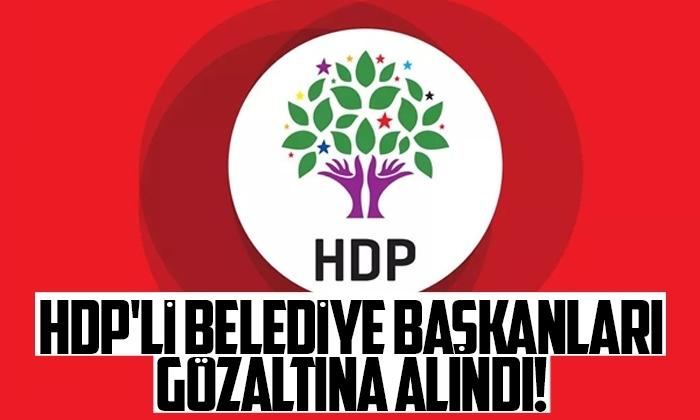 HDP'li Belediye başkanları gözaltında