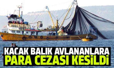 Kaçak balık avladığı tespit edilen şahıslara para cezası kesildi