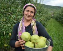Rusya 20 ton meyveyi geri gönderdi