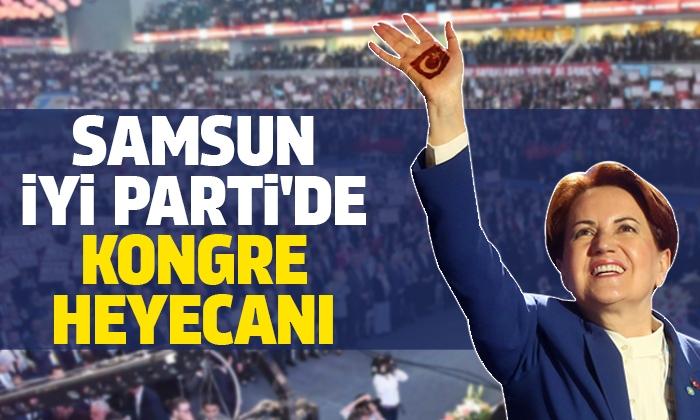 İYİ Parti Samsun Teşkilatında kongre heyecanı yaşanıyor