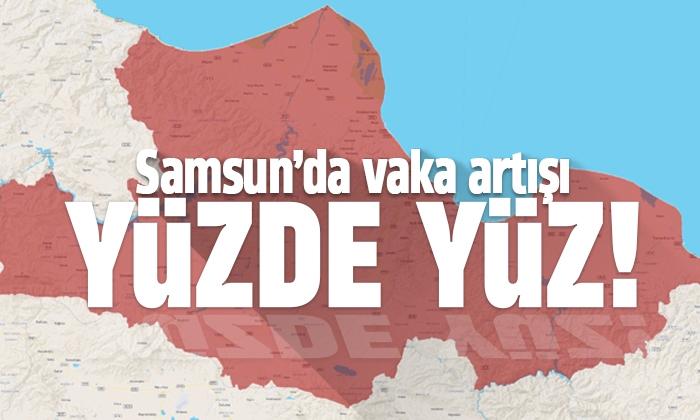 Samsun'da vaka artışı yüzde 100