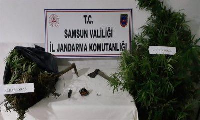 Samsun'da Dev Uyuşturucu Operasyonu! 45 Gözaltı