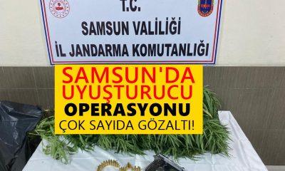Samsun'da Dev Uyuşturucu Operasyonu Çok Sayıda Gözaltı!