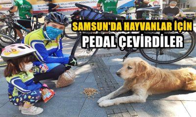 Samsun'da Hayvanlar İçin Pedal Çevirdiler