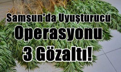 Samsun'da Uyuşturucu Operasyonu: 3 Gözaltı!