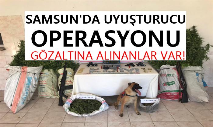 Samsun'da Uyuşturucu ve Silah Operasyonu Gözaltılar Var!