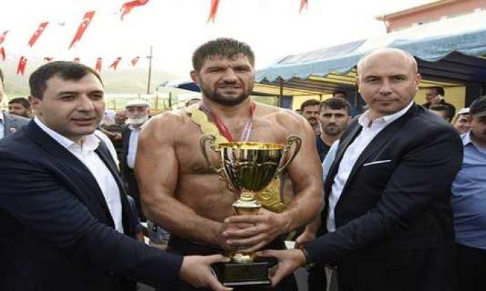 Tekkeköy Geleneksel Yağlı Güreşleri'nde başpehlivanlığı Şaban Yılmaz kazandı
