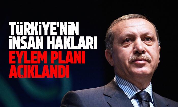 Türkiye'nin İnsan Hakları Eylem Planı Açıklandı