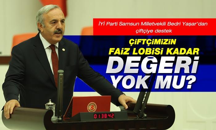 Samsun Türkiye'nin gıda deposudur