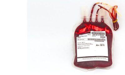 İyileşen Koronavirüs hastalarının kanları 'dark web'de satışa çıkarıldı
