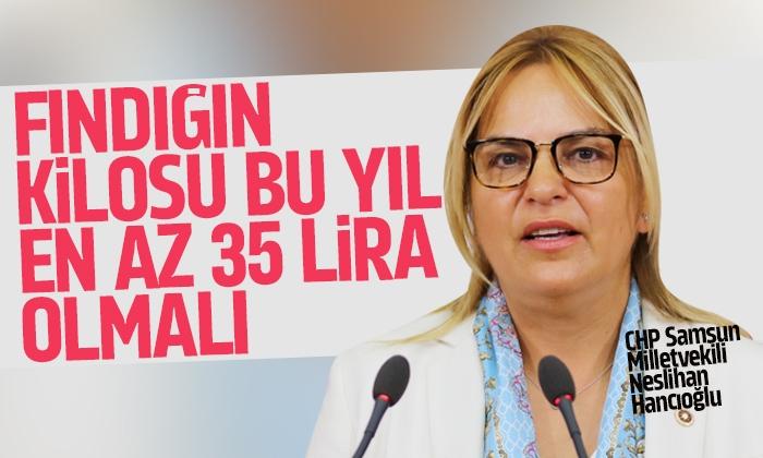 Hancıoğlu: '35 liranın altındaki bir fiyat, fındık üreticisini ateşe atmaktır'