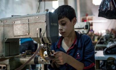 İş kuracak gençlere devlet desteği!