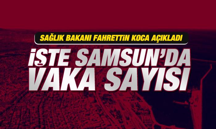 Samsun'da korona virüs vaka sayısı kaç?