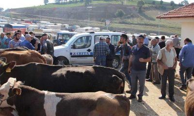 Havza Belediyesi kurban bayramı öncesi tedbir aldı