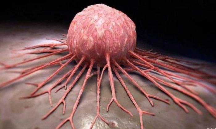 Kanser tedavisinde doğal ve bitkisel tedavi