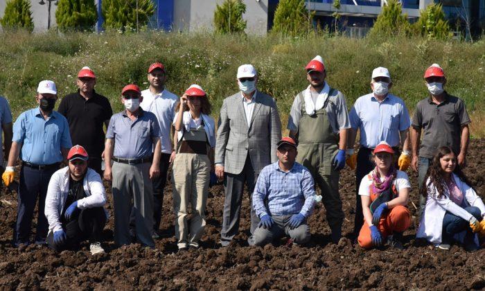 Ziraat Fakültesi'nden Tıbbi-Aromatik Bitkileri, Tanıtım ve Üretim Bahçesine Dönüştürecek Proje