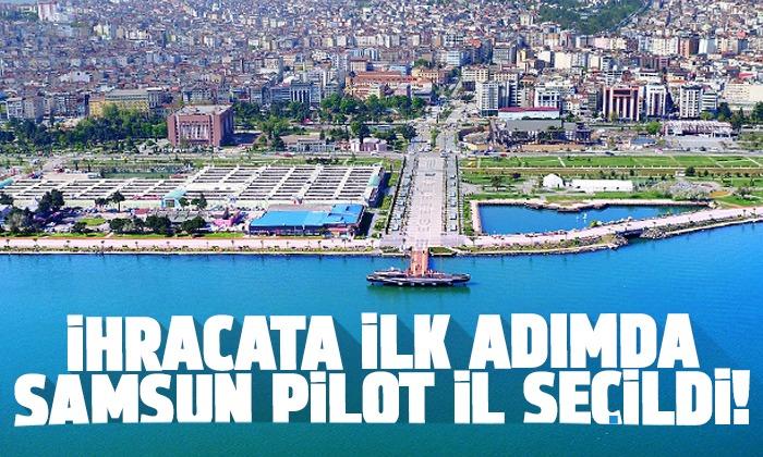 İhracata İlk Adım'da Samsun pilot il seçildi