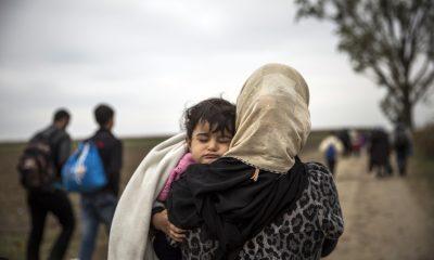 5 yıl sonra 100 kişiden 5'i Suriyeli olacak