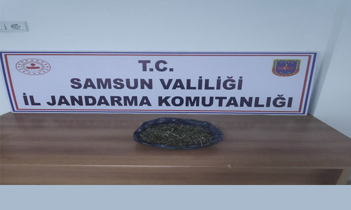 Samsun'da uyuşturucu madde ile yakalanan iki kişi gözaltına alındı