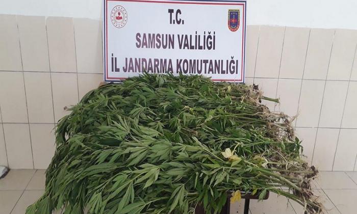 Uyuşturucu madde ele geçirilerek 2 şahıs gözaltına alındı